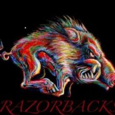 This is for all my family and friends in Arkansas. Razorback Painting, American Flag Wallpaper, Arkansas Razorbacks Football, Woo Pig Sooie, Moving To Texas, Fall Pictures, Lion Sculpture, Phi Mu, Craft Ideas