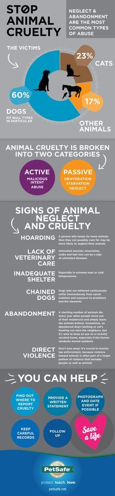 The reality of animal cruelty can feel overwhelming. This infographic breaks it down and explains how you can help. Please share!