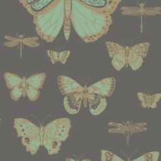 Butterflies & Dragonflies 103/15067 - Whimsical - Cole & Son
