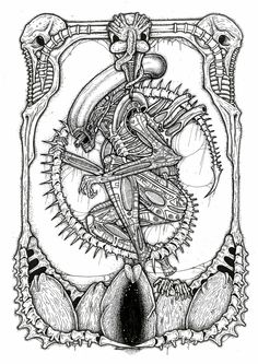 xenomorph from the film Alien by Alex Yates print available here http://ayillustrations.bigcartel.com/product/alien-print