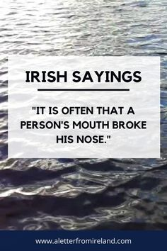 It is often that a person's mouth broke his nose. Irish proverbs!