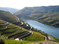 UNESCO World Heritage Portugal Alto Douro Wine Region