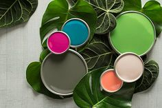 Take a bold color adventure with our Color Palette of the Year. See the colors in action.