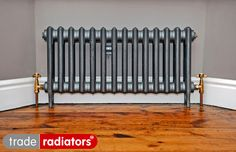 Lee Durant's Georgian cast iron radiator in Old Pewter from Trade Radiators Georgian Interiors, Cast Iron Radiators, Room Stuff, Pewter, Snug, Room Ideas, House Ideas, Lounge, Home Appliances