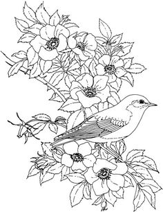 Free Printable Adult Coloring Pages - Flower Coloring Pages Bird Coloring Pages, Printable Coloring Pages, Adult Coloring Pages, Coloring Sheets, Coloring Books, Printable Tattoos, Digi Stamps, Colorful Pictures, Colorful Flowers