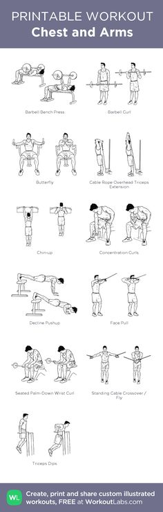 Chest and Arms: my custom printable workout by @WorkoutLabs #workoutlabs #customworkout