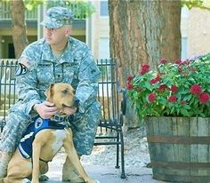 Army specialist, David Brandrowsky, huddled in the corner of his room with a gun to his head. Before he pulled the trigger, Benny, his service dog, knocked the gun out of his hand. Benny saved his life. Support service dogs and soldiers with PTSD...please.