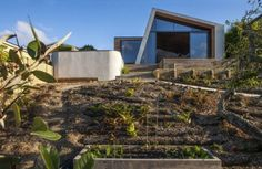 The house is renovated by Dorrington Architects