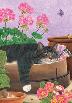 Cat Art by Artist Anne Mortimer I Love Cats, Crazy Cats, Cool Cats, Image Chat, Gatos Cats, Photo Chat, All About Cats, Flag Decor, Cat Drawing