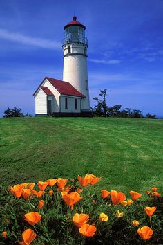 Cape Blanco is a prominent headland on the Pacific Ocean coast of southwestern Oregon, forming the westernmost point in the state. By Dave Mills Lighthouse Pictures, Lighthouse Painting, Oregon Travel, Light Of The World, Oregon Coast, Oregon Usa, Am Meer, Belle Photo, Beautiful Landscapes