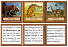 krabbelwiese: Material zur Urzeit (Geschichte) & Legematerial Jungsteinzeit