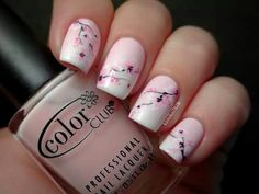 Pale pink overlaid with cherry blossom nail design