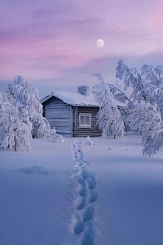 Find images and videos about winter, snow and landscape on We Heart It - the app to get lost in what you love. Winter Szenen, Winter Cabin, Winter Christmas, Snow Cabin, Winter Photography, Nature Photography, Snow Scenes, Winter Beauty, Winter Pictures