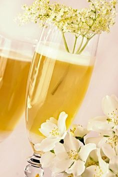 Bezinkové šampaňské White Wine, Alcoholic Drinks, Juice, Food And Drink, Smoothie, Recipes, Gardening, Tips, Party