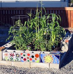 The girls would love this!! Decorate the cinder blocks in our raised garden. Maybe help them feel a little ownership for the garden!