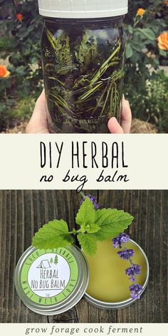 Natural Home Remedies Learn how to make this DIY homemade herbal no bug balm to keep unwanted bugs away! Made with pest repelling lemon balm, you can avoid the toxic chemicals in commercial bug spray with this all natural herbal recipe. Healing Herbs, Natural Healing, Natural Life, Natural Living, Natural Foods, Medicinal Herbs, Natural Home Remedies, Herbal Remedies, Cold Remedies