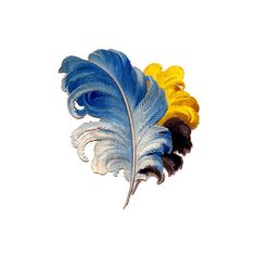 Victorian Graphics Colorful Feathers Plumes ❤ liked on Polyvore featuring feathers, backgrounds, filler, flowers and wings