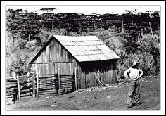 Baú do Luizinho: Do Blog do Wille: A Lenda do Capitão Índio Bandeir...
