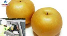 Em Nagano, os policiais criaram uma campanha super criativa para prevenção de acidentes, distribuindo peras! Vamos entender o motivo?