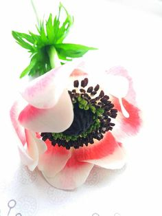 Anemones from cold porcelain Anemone Floral arrangements Cold porcelain Polymer flower Flower Compositions Bouquet of flowers Wedding Flower