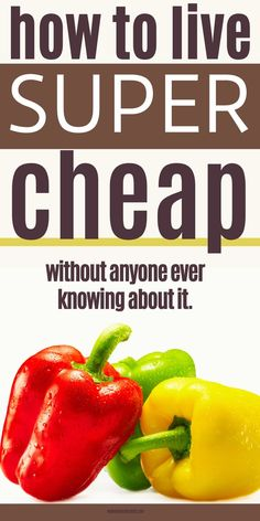 In this post I will show you How to Live as Cheaply as Possible (Without Ever Appearing Cheap) so you can master a living frugally. Here's what living a frugal lifestyle and being frugal looks like without seeming like you hate to spend money. Don't forget to save it to your how to be frugal board so you can easily refer to it later. Ways to save money | Frugal living tips | Living cheap saving money | Saving Money frugal living | How to be frugal | Living off One Income Frugal Living Tips, Frugal Tips, Frugal Meals, Cheap Meals, Budget Meals, Extreme Cheapskates, Money Saving Tips, Saving Ideas, Budgeting Money
