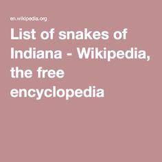 217 Best Snakes Of Indiana Images Blackboards Chalk Board Chalkboard