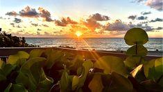 Boca Raton Beach, Sunrise Pictures, Us Beaches, South Florida, Modern Contemporary, Golf Courses, Landscaping, Ocean, Sunset