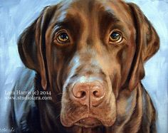 8x10 Labrador Retriever Chocolate Lab Fine Art by studiolara316