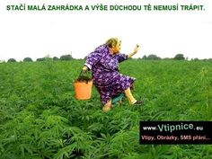 Srandovní obrázky - zahrádka Picnic Blanket, Outdoor Blanket, Sad Stories, Plexus Products, I Laughed, Funny Pictures, Jokes, Youtube, Instagram