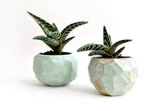 Faceted Ceramic Planter, Glazed in Green Color and in Red Clay or White Clay, from Barruntando on Etsy