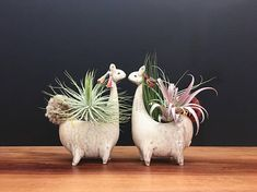 This listing is for one adorable handmade llama air plant vase with vintage cream and sugar glaze, fun handmade alpaca pompom tail, and handmade tassel earrings! It is totally tassel bedazzled! This is a petite vase, perfect for displaying an air plant! Each piece is handmade, no two