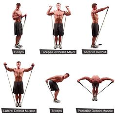 types of band exercise Resitance Band Workout, Cable Workout, Gym Workout Tips, At Home Workout Plan, At Home Workouts, Band Workouts, Resistance Tube Workout, Resistance Band Training, Resistance Band Exercises