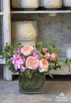 Sweet and delicate!  http://shop.rogersgardens.com/browse.cfm/floral-arrangements/2,72.html