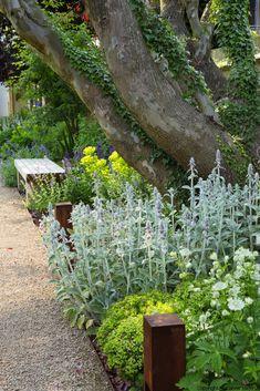 Exterior wall garden tuin 16 ideas for 2019 Back Gardens, Small Gardens, Outdoor Gardens, Landscape Design, Garden Design, Chelsea London, Contemporary Garden, Garden Borders, Plantation