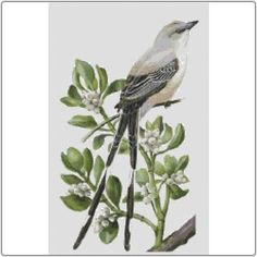 State Symbols in Cross Stitch - Oklahoma Scissor-Tailed Flycatcher and Mistletoe #Oklahoma