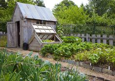 shed, cold frame and garden -- nice idea to incorporate cold frame