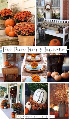 Fall Decor Ideas and Inspiration | Frosted Events