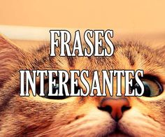 ✅😱❤️https://frases.top/frases-interesantes/ ❤️😱✅ #Frases Interesantes ¡¡Lista de #citas para ser original!!