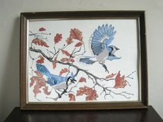 Paint By Numbers Bird Framed Bluejay Painting Nature Art
