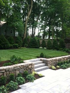 Carey Ezell Landscape Design Granite terrace and steps with field stone retaining wall and upper lawn surrounded by Frasier firs Arborvitae Dark American Rhododendron var. Backyard Retaining Walls, Stone Retaining Wall, Backyard Patio, Retaining Wall With Steps, Backyard Ideas, Sunken Patio, Retaining Wall Design, Desert Backyard, Stone Fence
