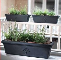 Rectangular planters to sit on top of the retaining wall.