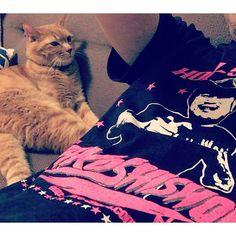 ねことTシャツと私。 #コアチョコ  #ハードコアチョコレート #ハリウッドザコシショウ  #tshirt  #cat  #写真撮りづらいdonjun7712016/05/17 15:57:14