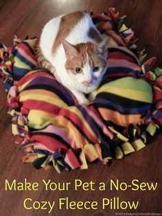 An easy craft project! Make your pet a NO-SEW cozy fleece pillow!  Step by step instructions.