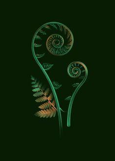Soubois is a Bistro du Terroir, Bar and Nightclub, located in Montréal's downtown area, for which Baillat Studio created a beautiful visual identity. Botanical Illustration, Illustration Art, Maori Symbols, Zealand Tattoo, Nz Art, Maori Art, Kiwiana, Visual Identity, Identity Branding