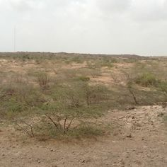 rugged landscape with scattered mounds (as one in the background)