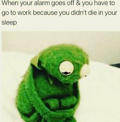 Back to Work Memes - kermit tells it how it is - when your alarm goes off and you have to go to work because you didn't die in your sleep