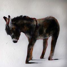 donkeys.eu / ezeltje.com