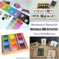 Montessori Sensorial Materials Every Child Will Love