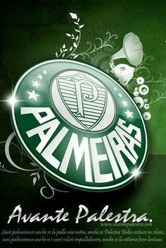 7d23d65f1f06e 11 melhores imagens de Palmeiras