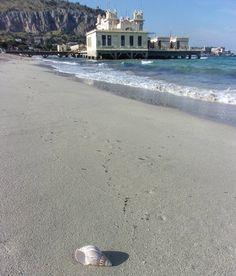 """""""Mi piace"""": 105, commenti: 1 - Giuseppe Namio (@brigante_siculo) su Instagram: """"#mondello #spiaggia #onthebeach #shell #conchiglia #battigia #plage #playa #beach #sand #sabbia…"""""""